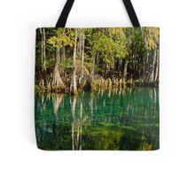 Cypress Tree Reflections Tote Bag