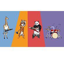 Zoo Rock Photographic Print