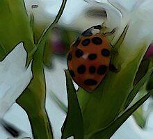 Ladybug in Fx by LynnL