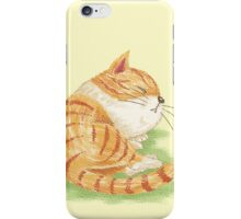 Tabby sleeping iPhone Case/Skin