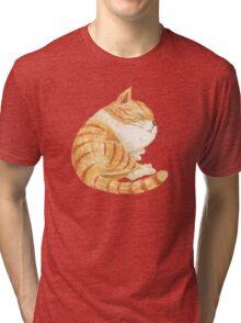 Tabby sleeping Tri-blend T-Shirt