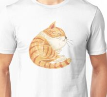 Tabby sleeping Unisex T-Shirt