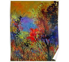 Autumn colours 450111 Poster