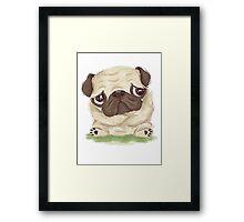 Thoughtful pug Framed Print