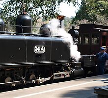 Puffing billy # 4 by Virginia McGowan