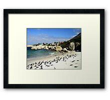 Penguin Paradise Framed Print