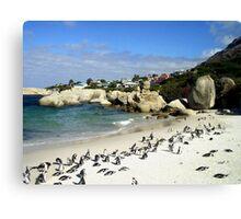 Penguin Paradise Canvas Print