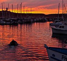 Sunset Pillar Point Harbor, Half Moon Bay, California by Scott Johnson