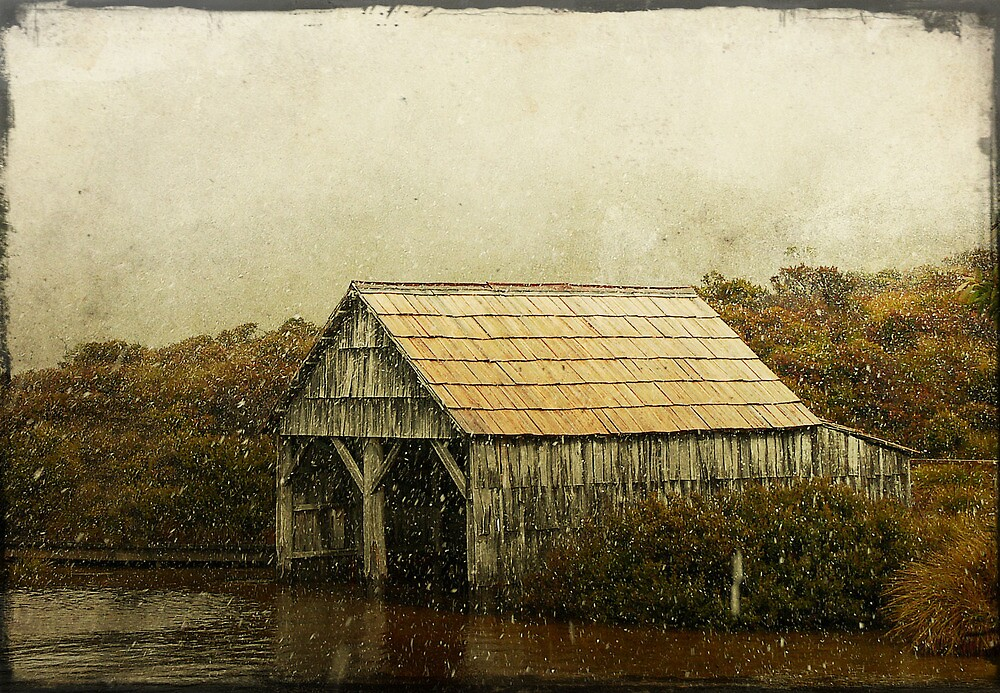 The Boat Shed by Carol Knudsen