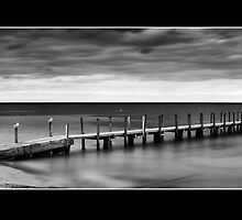 Monochrome Quindalup by Ryan Epstein