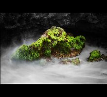 Rock at Trigg by Ryan Epstein