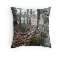 Life and Death (Nature Reclaiming an Old Cemetery) Throw Pillow