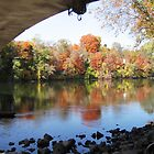 Fall under a bridge by Wayne George