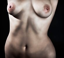 female torso by Robert Munden