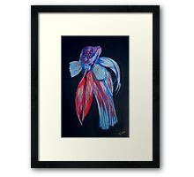 Siamese Fighting Fish Framed Print