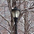 Winter Lamp Post by Wayne George