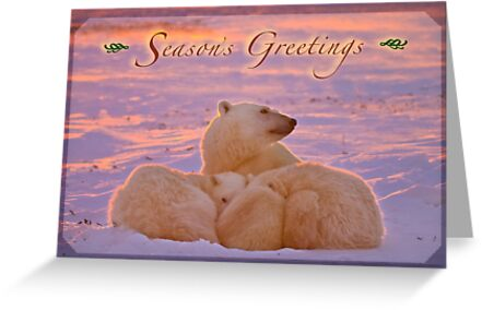 Season's Greetings from a polar family by Owed to Nature