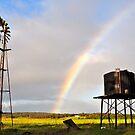 Rainbow's End by Coralie Plozza
