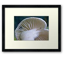White Wax Cap Framed Print