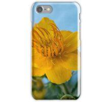 Skagway flora! iPhone Case/Skin