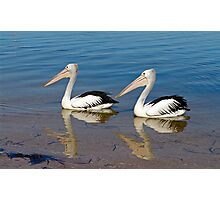 Synchronized Swiming Photographic Print
