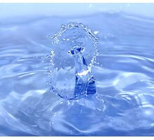 Water sculpture Photographic Print