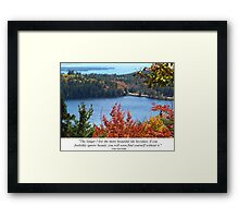 Pic Quote of the Day (beauty - Wright) Framed Print