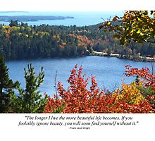 Pic Quote of the Day (beauty - Wright) Photographic Print