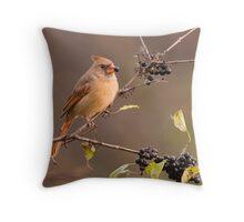 Female Northern Cardinal - Ontario Canada Throw Pillow