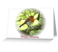 Robin Red Breast for Christmas Greeting Card