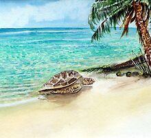 Landfall - Fijian  Islands by Rob Beilby