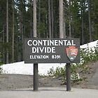 The Continental Divide Yellowstone Park by Sarita Andres
