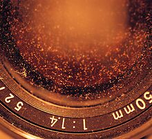Lens by morningbri