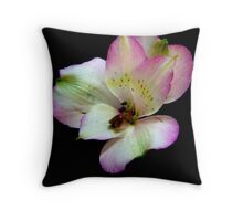 Consider the lilies of the field ... Throw Pillow