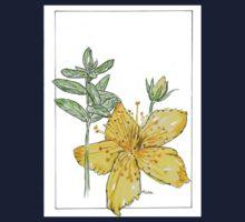 Hypericum perforatum - Botanical Kids Tee