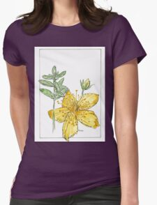 Hypericum perforatum - Botanical Womens Fitted T-Shirt
