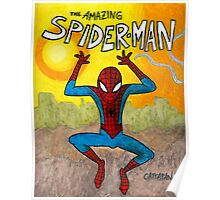 Spidey swings at sunset Poster