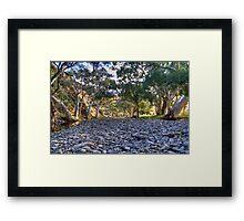 Flinders .. or Murraylands????? Framed Print
