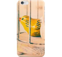 Two Birds One Cage iPhone Case/Skin
