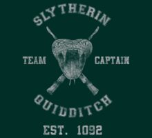Slytherin Quidditch Athletic Tee Harry Potter Shirt