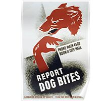 WPA United States Government Work Project Administration Poster 0305 Report Dog Bites Poster