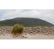 Windswept Achill Photographic Print