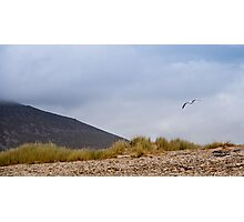 Soaring above Achill Photographic Print