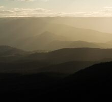 Peace at Dusk - Blue Mountains NSW by Dilshara Hill