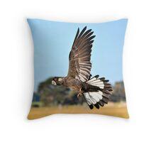 Black Cockatoo In Flight Busselton Western Australia  Throw Pillow