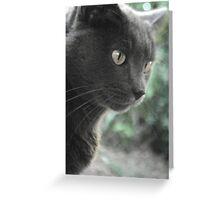 Backyard Jungle Cat!! Greeting Card