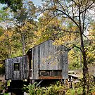 Kirtland Mill by Misti Love