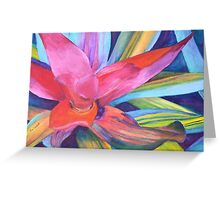 Bromeliad Pink Greeting Card