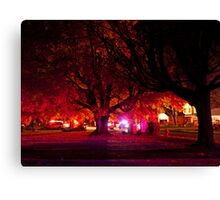 Panic In The Streets Canvas Print