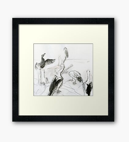 Pelican's Convention Framed Print
